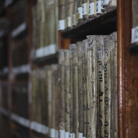 Biblioteca de Los Descalzos