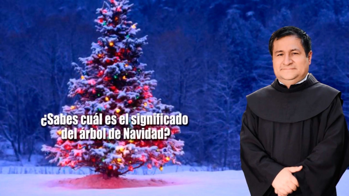 UN SANTIAMEN: ¿Sabes cuál es el significado del árbol de Navidad?