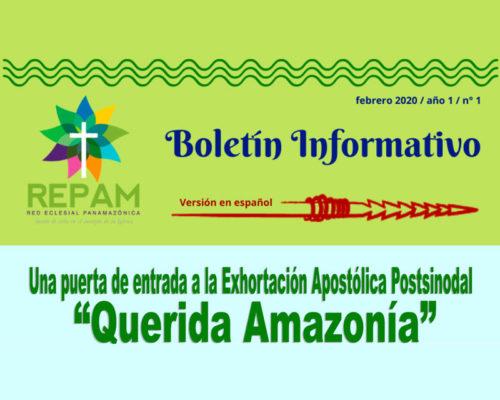 """Una puerta de entrada a la Exhortación Apostólica Postsinodal """"Querida Amazonía"""""""