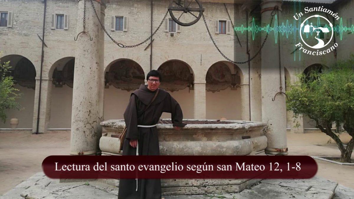 Evangelio según san Mateo 12, 1-8